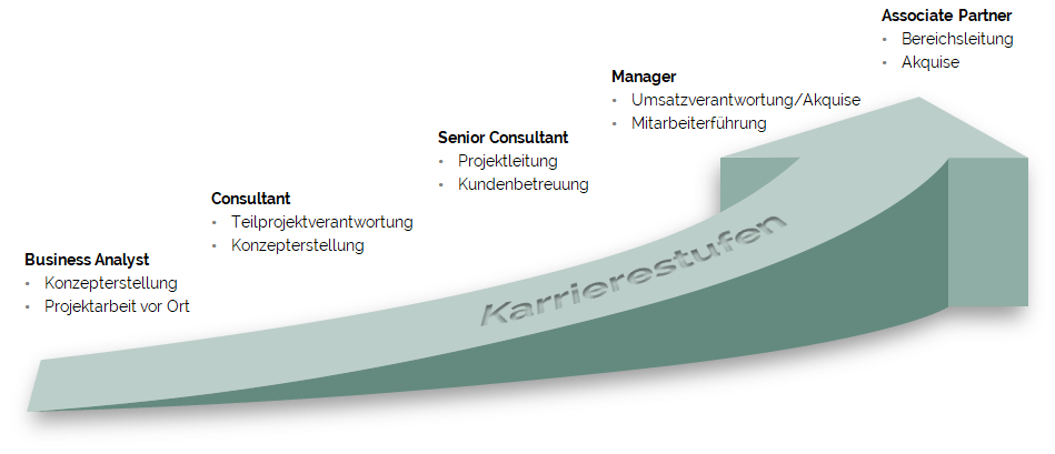Chart Perlitz Career Stages